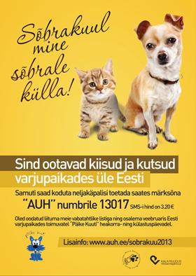 Auh kogus koduta loomadele üle 5000 euro