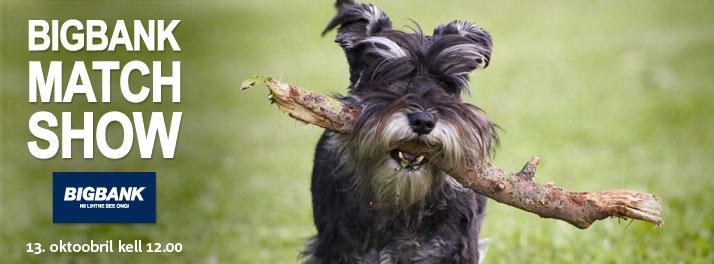 Nädalavahetusel toimub Eesti suurim heategevuslik koertenäitus