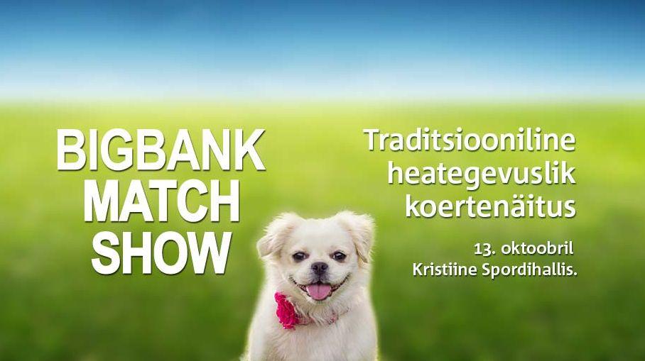Homme toimub Eesti suurim heategevuslik koertenäitus