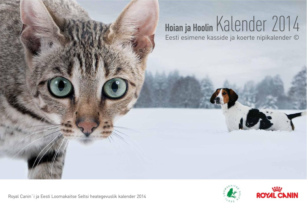 kalender_els_rc_2014_kaanepilt