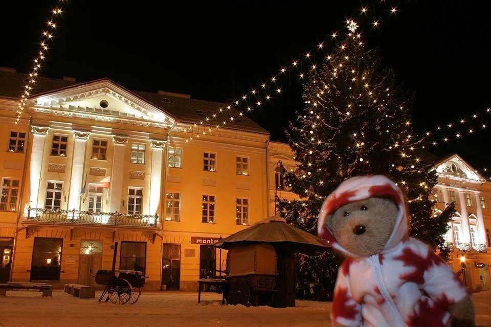 Tartu loodusmaja heategevuslik jõululaat ja talvised töötoad