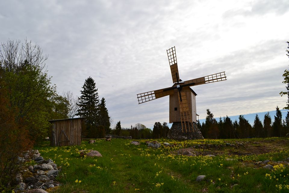 Ennu tuulik Saaremaal