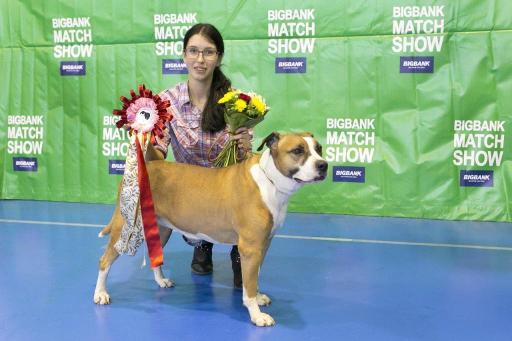 BIGBANK Match Show toetab Võru kodutute loomade varjupaika 1500 euroga