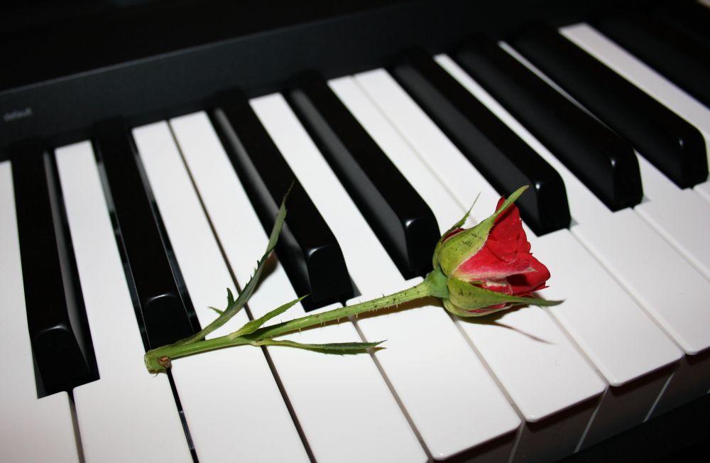 Estonia initsiatiivil sai Slovjanski kaunite kunstide kool klaveri