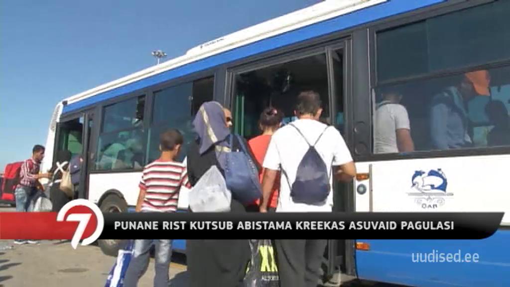 Punane Rist kutsub abistama Kreekas asuvaid pagulasi