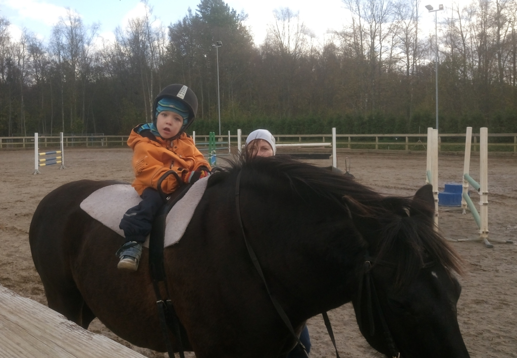 LASTEFOND AITAB! Lastefond toetab sünnitraumaga kaksikute ratsutamisteraapiat