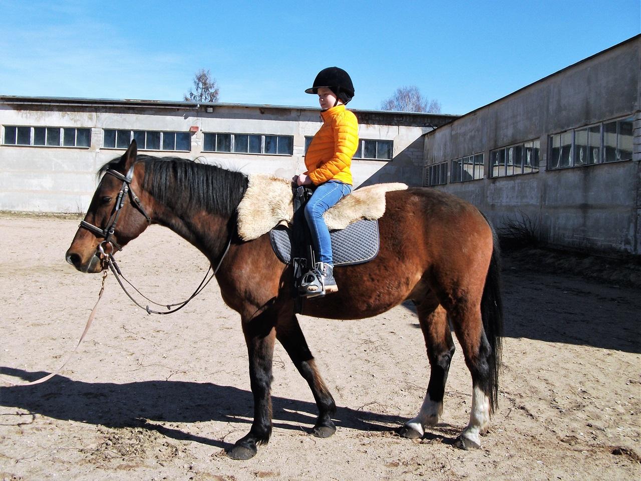 Lastefond aitab tasuda 10-aastase Aspergeri sündroomiga poisi ratsutamisteraapia eest