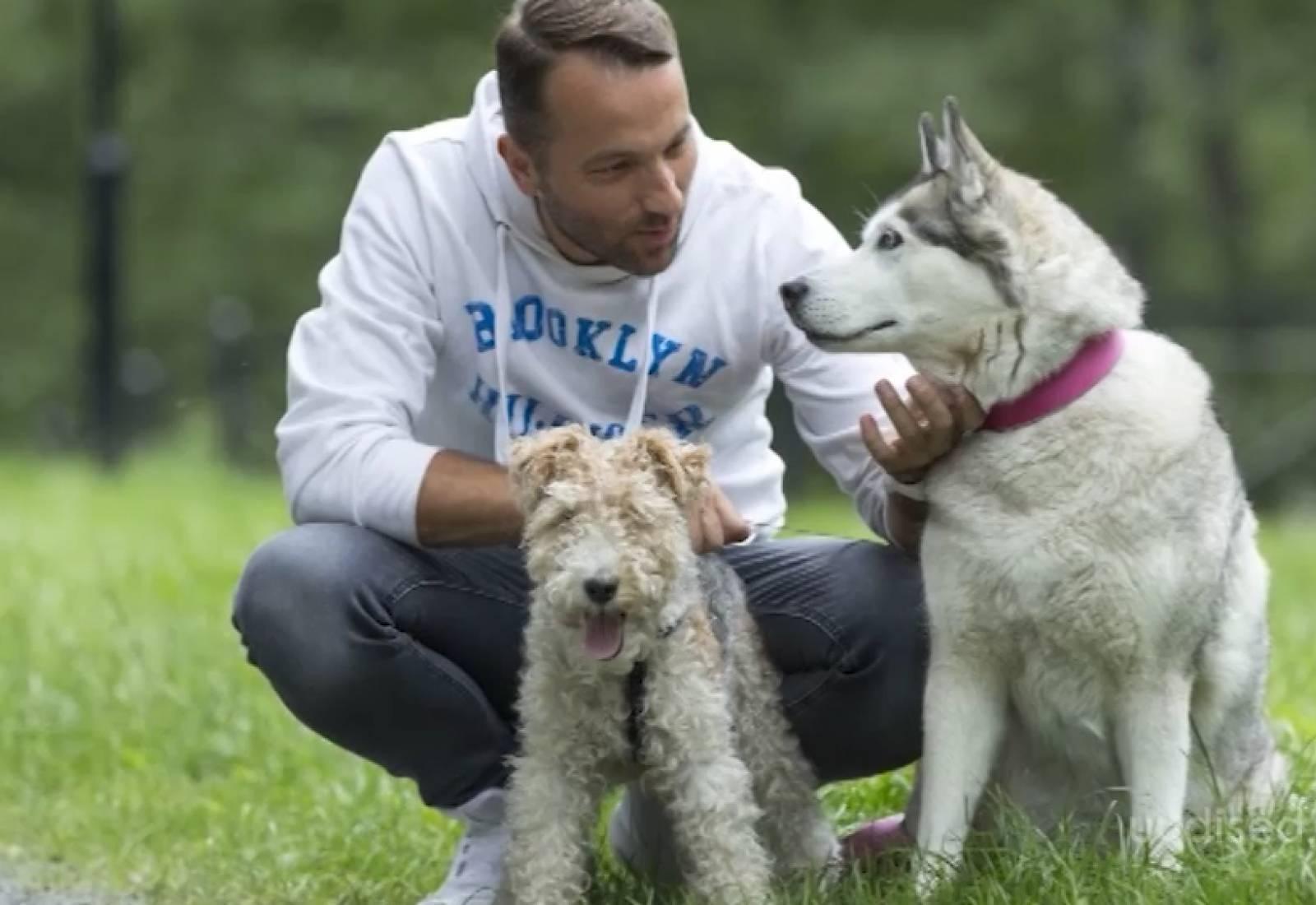 VIDEO! Hea südamega inimene! Vaata, kuidas jõudis Bert Pringi koju tema teine imearmas koerake