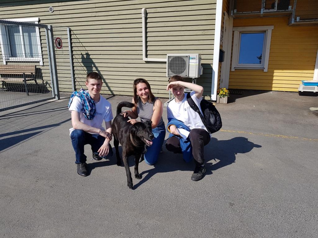 Noored aitasid Paljasaare loomade varjupaika