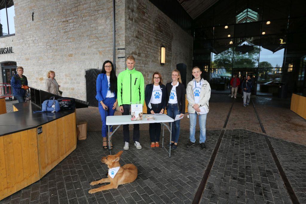 Tallinna loomade varjupaiga toetuskampaania kutsub inimesi annetama