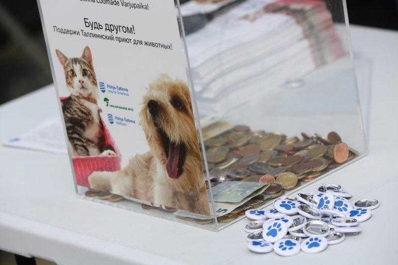 Head inimesed! Merepäevade külastajad annetasid loomade heaks üle 1800 euro