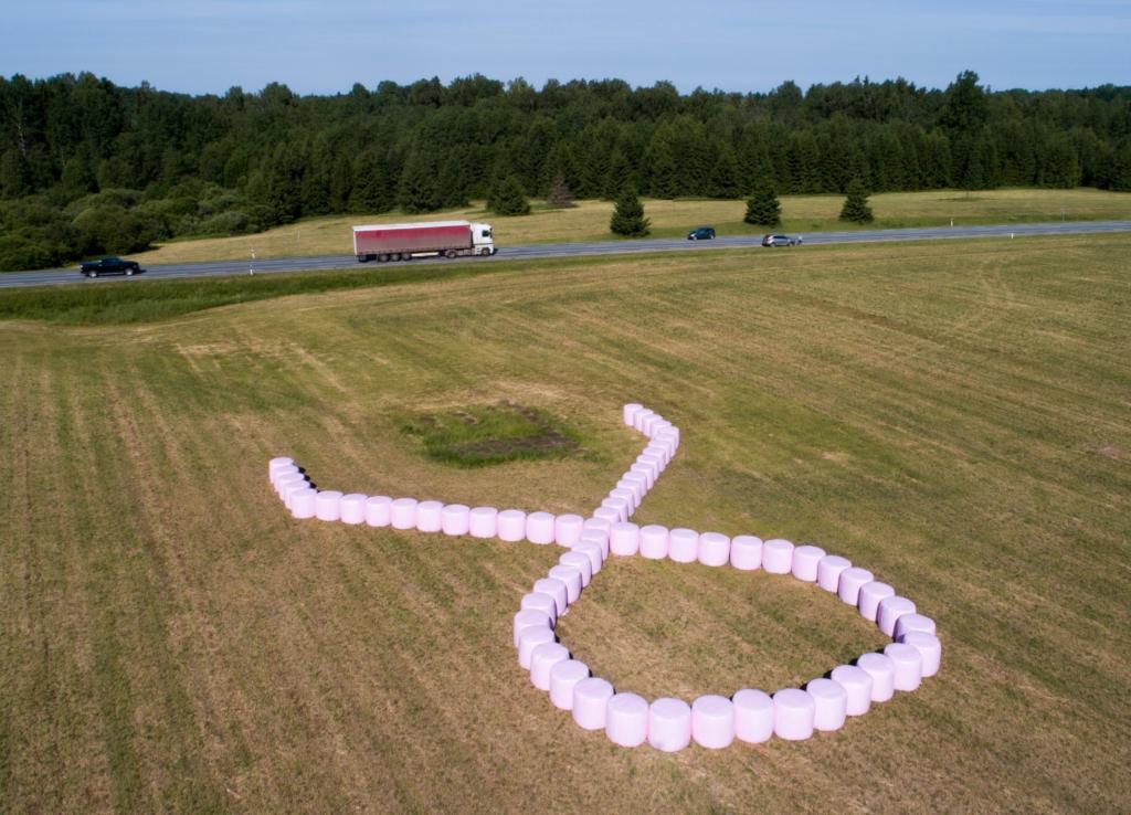 VALI ROOSA! Põllumajandusettevõte Baltic Agro koos silopallikiletootjaga Trioplast on käivitanud heategevusliku kampaania