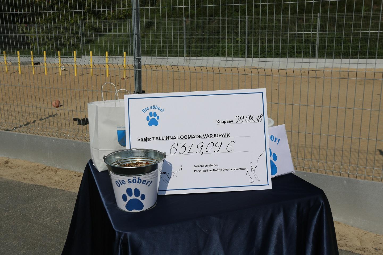 Ilusad hinged! Põhja-Tallinna noored kogusid loomade varjupaigale kokku üle 6 000 euro