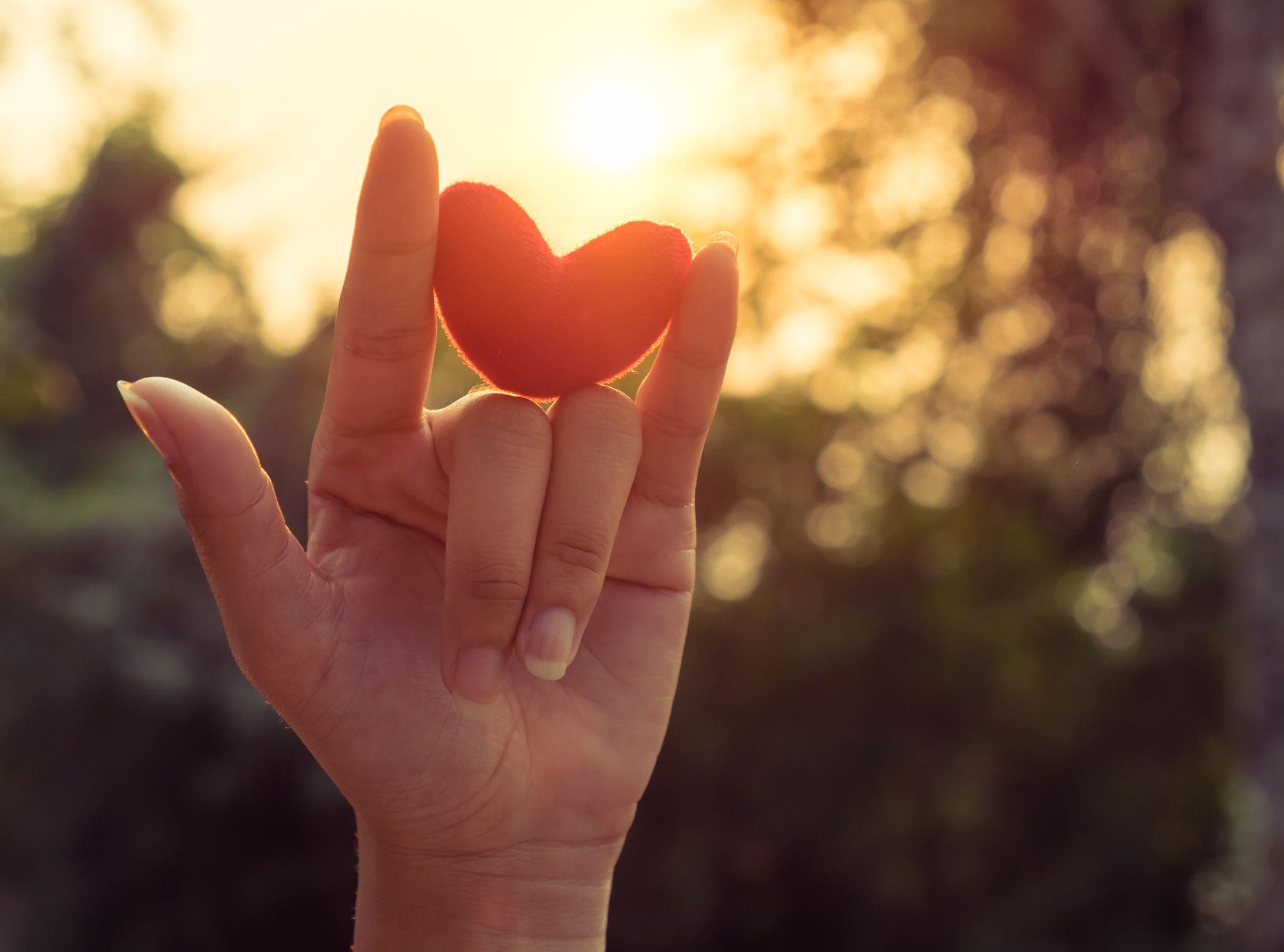 Ühel organdoonoril on pärast surma võimalik kinkida uus elu kuni kaheksale inimesele