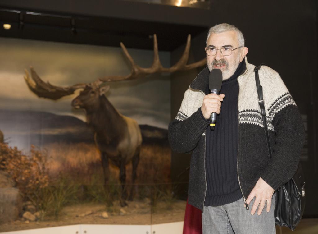 Aleksei Turovski: Tiigriorg on nagu Wiiralti pilt lamavast tiigrist kasepuude vahel