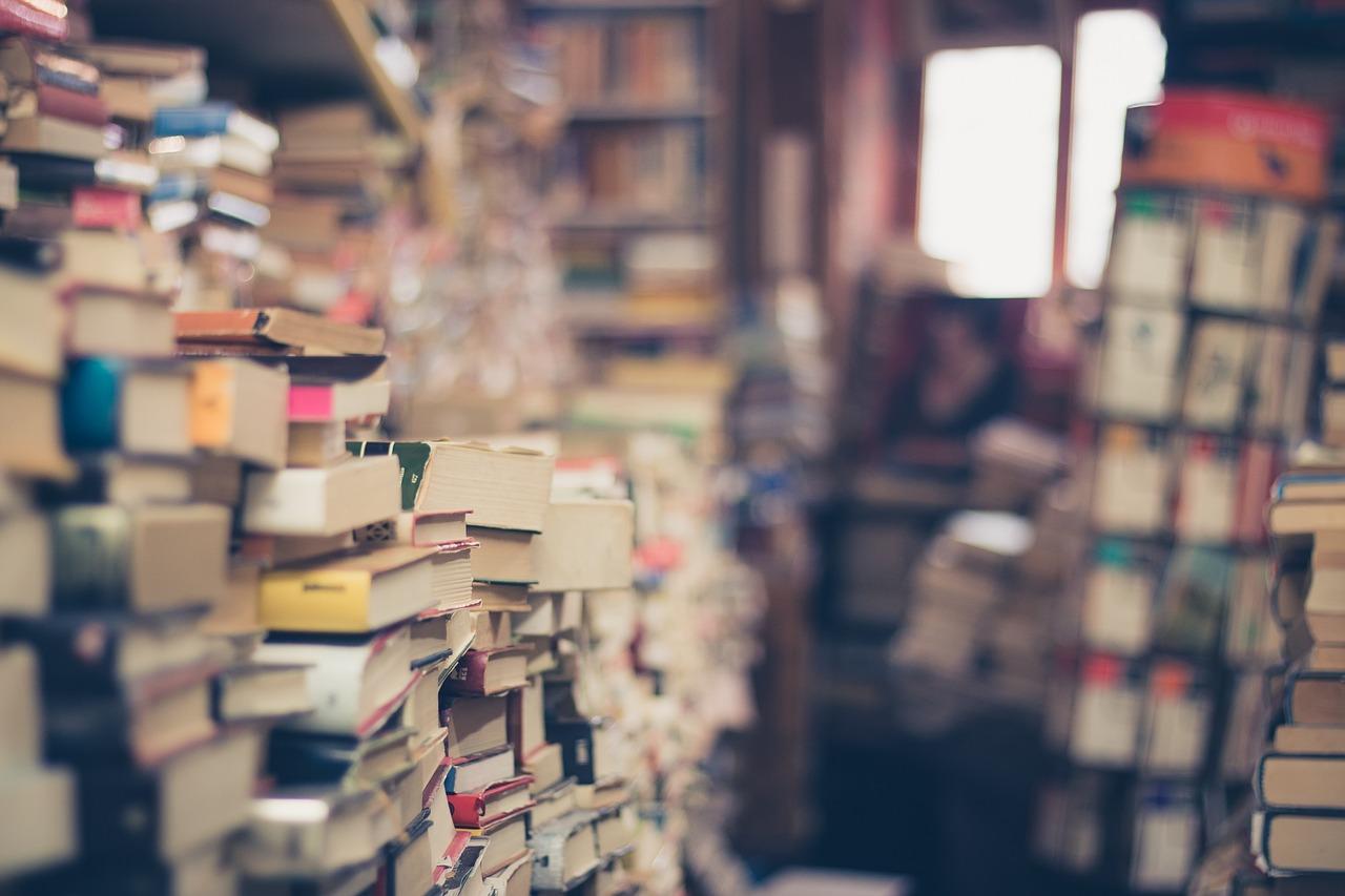 raamatud.Pixabay