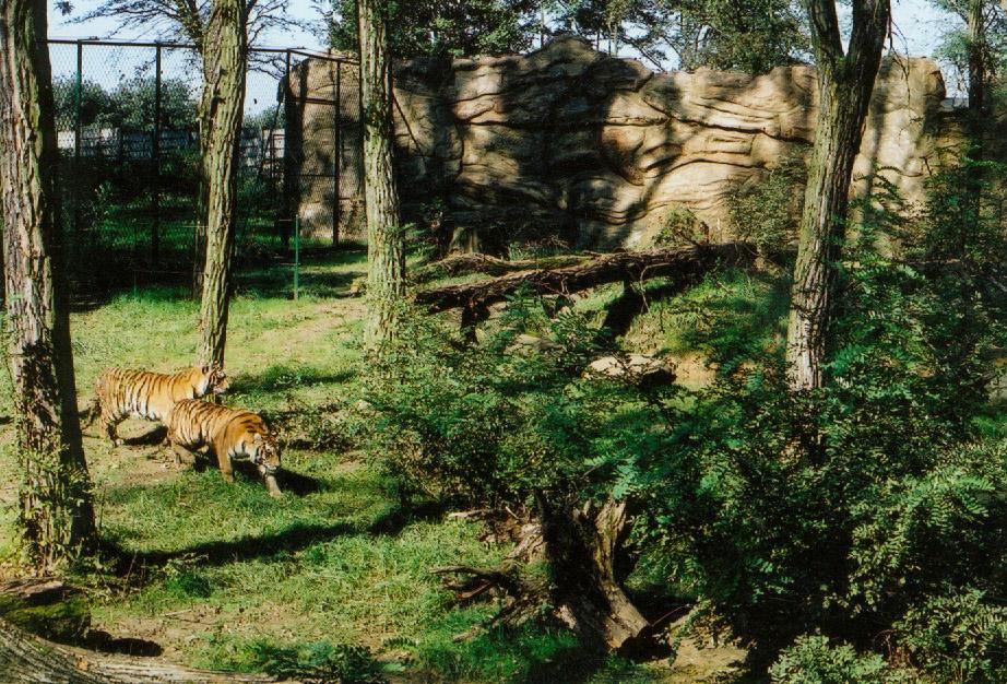 Zlin-Lesna 2 Foto Tallinna Loomaaed