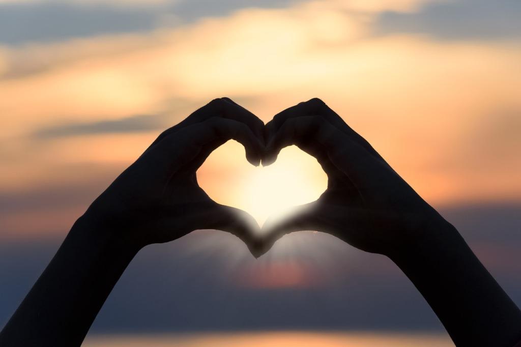 süda pixabay